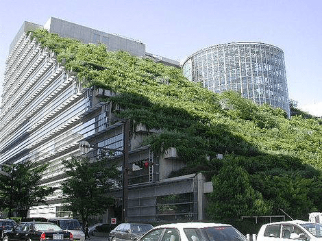 Green Roof 2